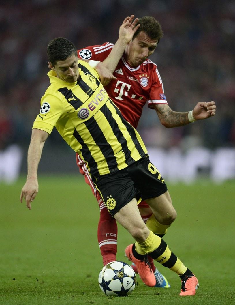 Robert Lewandowski za rok odejdzie z BVB za darmo /AFP