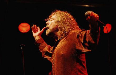 Robert Plant zaklina Anabrus simplex fot. Jim Dyson /Getty Images/Flash Press Media