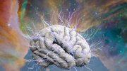 Robert Rutkowski: Mózg to najlepsza fabryka narkotyków