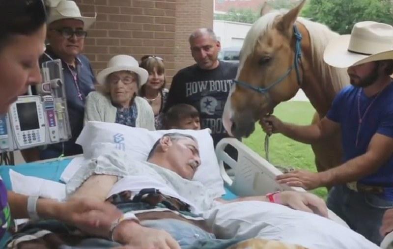 Roberto Gonzales żegna się z jednym ze swoich koni /click news /YouTube