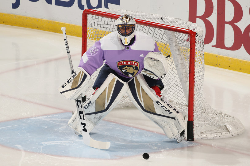 Roberto Luongo z Florida Panthers /Joel Auerbach /Getty Images
