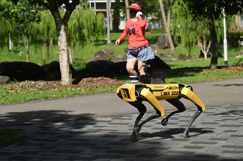 Robot Spot /AFP