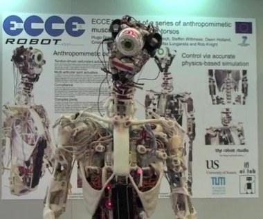Robot z ludzkim szkieletem