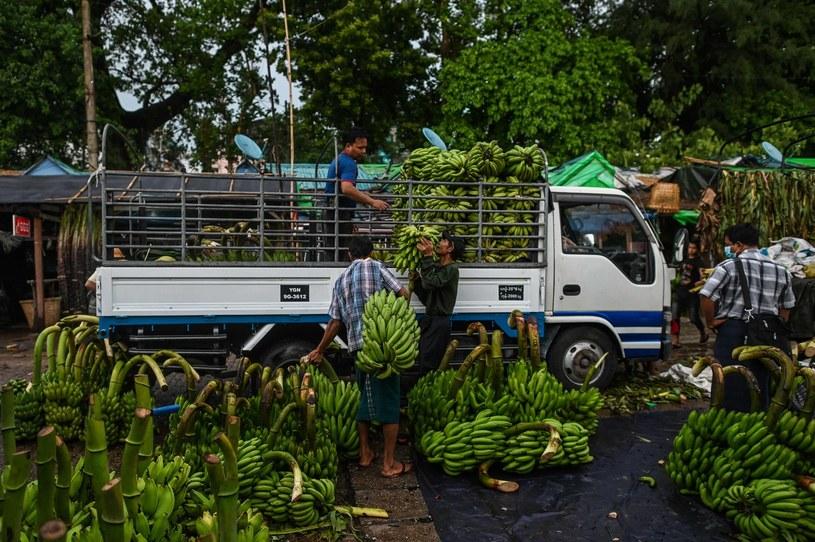 Robotnicy ładują banany na ciężarówkę na hurtowym targu bananów na molo w Rangunie (Yangon) /AFP