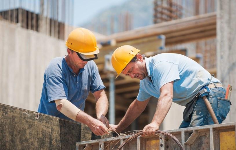 Robotnicy; zdj. ilustracyjne /123RF/PICSEL