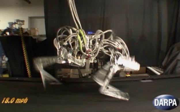 Roboty powoli stają się coraz bardziej zaawansowane /Internet