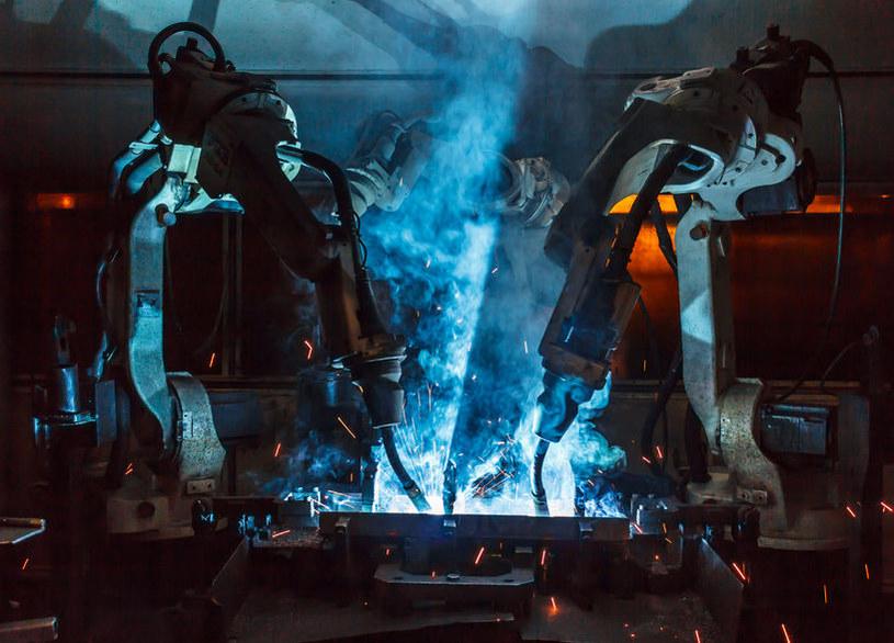 Roboty zastąpią zagranicznych pracowników w Wielkiej Brytanii? /123RF/PICSEL