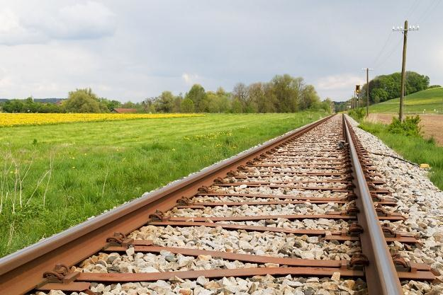 Rocznie modernizowanych powinno być ok. 1500 km torów /©123RF/PICSEL