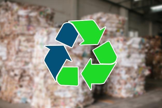 Rodacy mają duże problemy z segregacją śmieci /©123RF/PICSEL