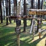 Rodowicz: Ciała ofiar zbrodni katyńskiej trzeba sprowadzić do Polski