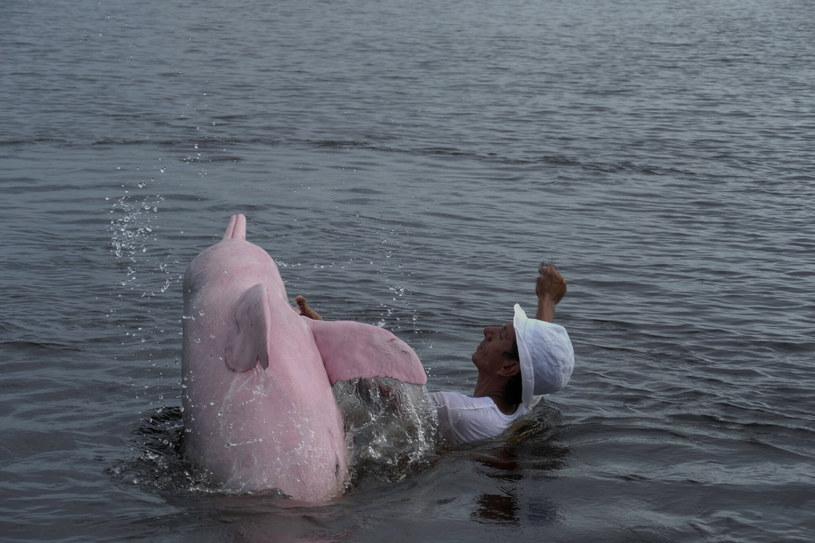 Rodrigo Miranda karmi różowego delfina /East News
