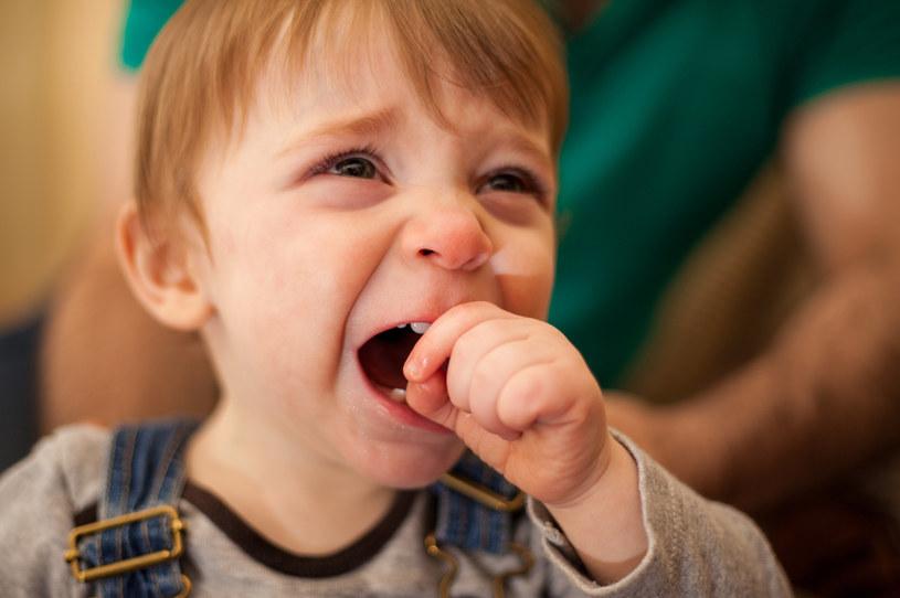 Rodzice są bezradni wobec patodeweloperki, ale największe straty i tak na końcu ponoszą dzieci... /123RF/PICSEL