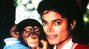 Rodzina Jacksona nie interesuje się szympansem piosenkarza