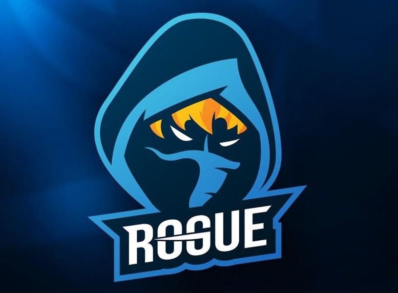 Rogue /materiały źródłowe