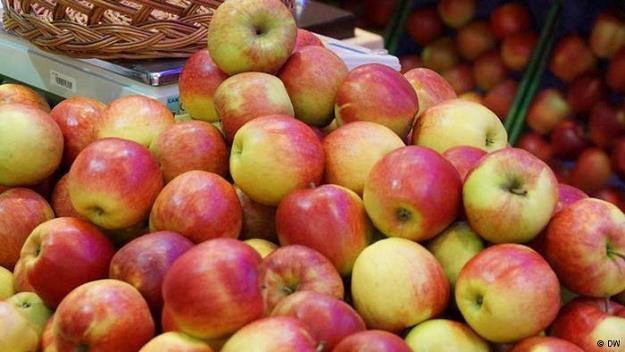 Rok po wprowadzeniu rosyjskiego embarga Polacy uzyskują z eksportu żywności rekordowe dochody /Deutsche Welle