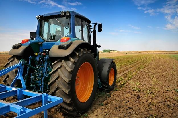Rolnictwo ukrywa około 550 tys. osób bez pracy /©123RF/PICSEL
