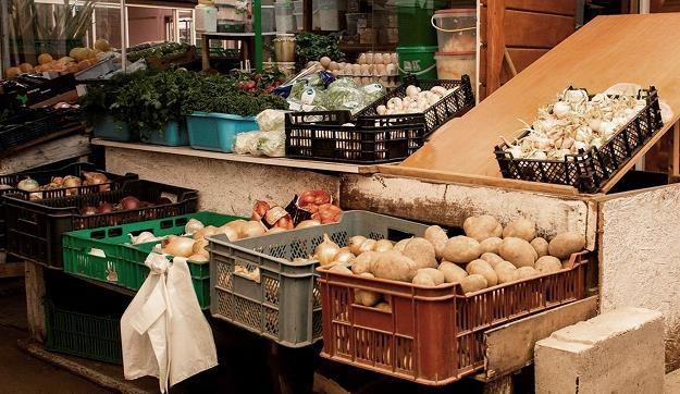 Rolnicy dostają zbyt mało za warzywa i owoce /MondayNews