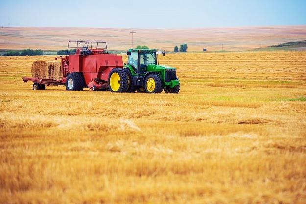 Rolnicy w Polsce nadal są nietykalni... /©123RF/PICSEL