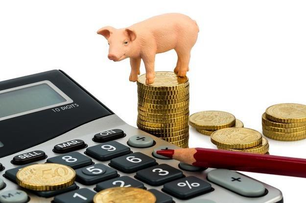 Rolnik może liczyć nawet na 900 tys. zł dofinansowania /©123RF/PICSEL