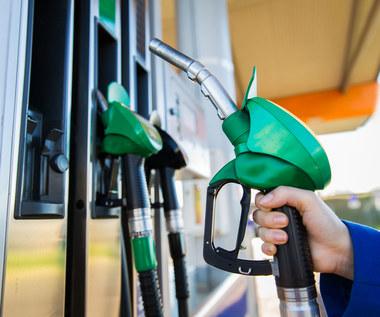 Ropa drożeje. Na stacjach benzynowych płacimy coraz więcej