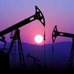 Ropa naftowa mocno tanieje. Ile zapłacimy za benzynę?