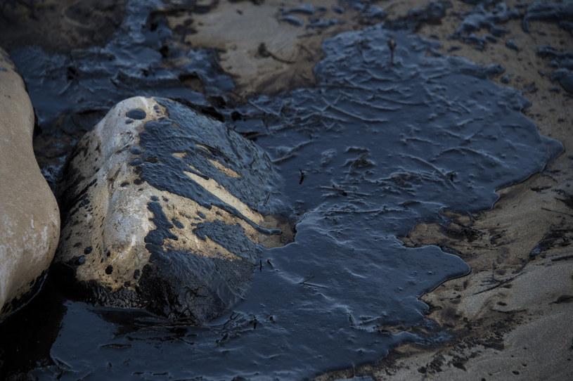 Ropa naftowa zalała kalifornijskie wybrzeże /AFP
