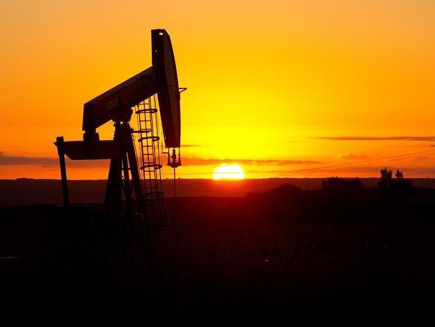 Ropa nie boi się wojny... /AFP
