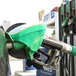 Ropa tanieje, a co z cenami paliw?
