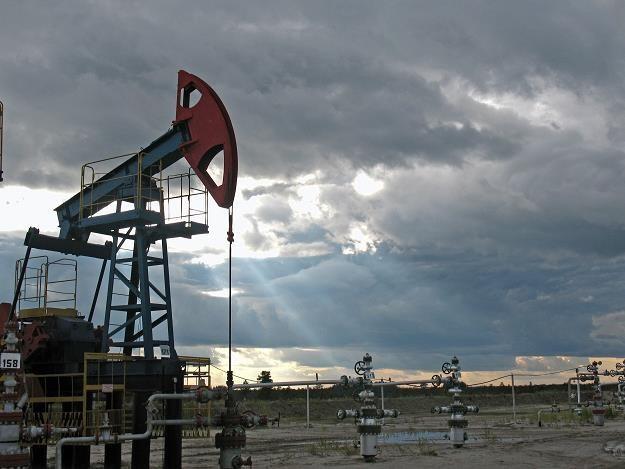 Ropa w USA staniała w 10 minut o ponad dolara /©123RF/PICSEL