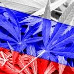 Rosja: Obywatele wydają na narkotyki prawie 68 mln USD dziennie