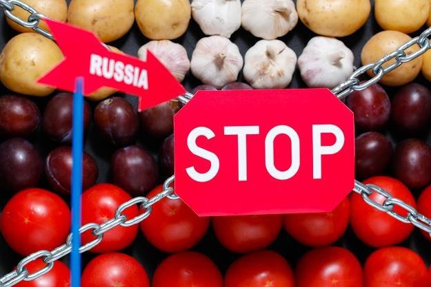 Rosja rozważa częściowe zniesienia embarga spożywczego /©123RF/PICSEL