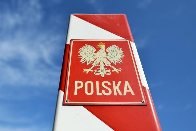Rosja złagodziła warunki embarga! Fot. Łukasz Szelemej /Agencja SE/East News
