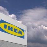 Roślinne mięso w restauracjach IKEA w Polsce