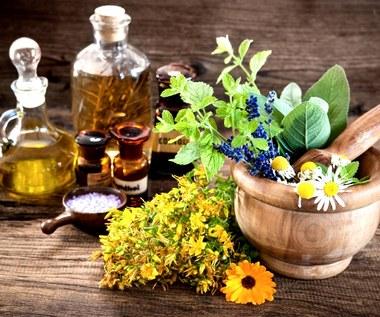 Rośliny, które pielęgnują skórę lepiej niż kosmetyki