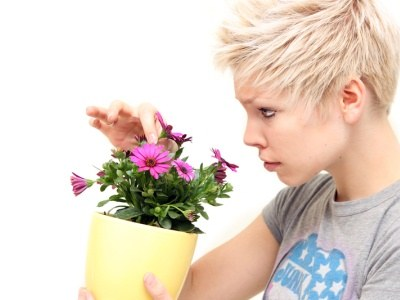 Rośliny mają korzystny wpływ na organizm  /© Panthermedia