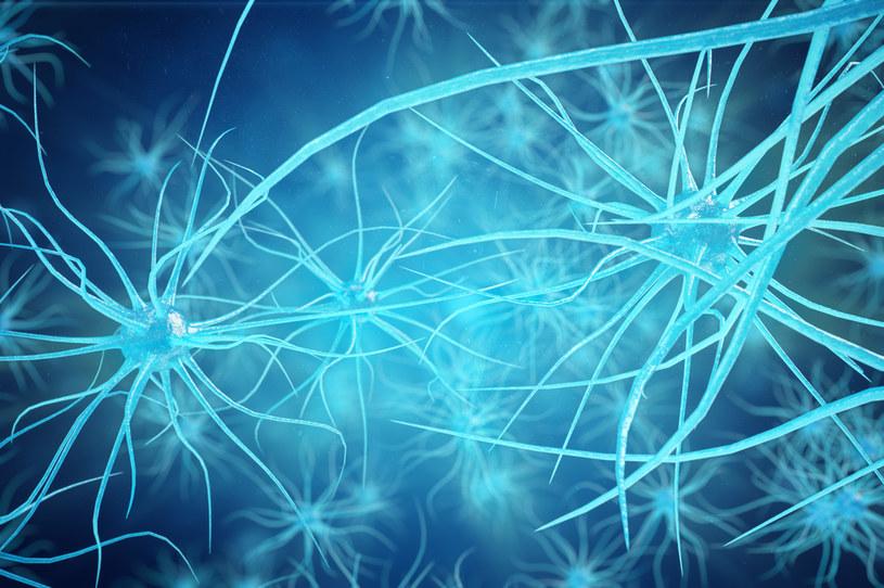 Rosnąca aktywność mózgu po zatrzymaniu krążenia mogłaby być pierwszą próbą wyjaśnienia doświadczeń śmierci – twierdzą naukowcy /123RF/PICSEL