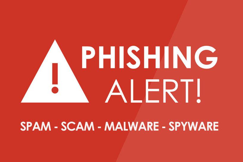 Rośnie liczba ataków phishingowych /123RF/PICSEL