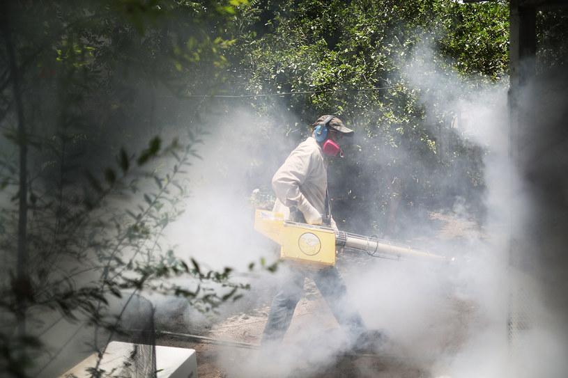 Rośnie liczba osób zakażonych wirusem Zika /AFP