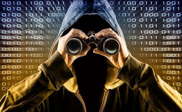 Rośnie liczba przestępstw w sieci /©123RF/PICSEL