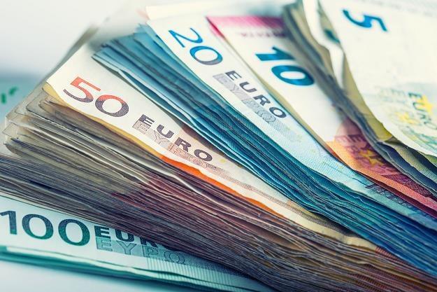 Rośnie niechęć Polaków do wprowadzenia euro... /©123RF/PICSEL