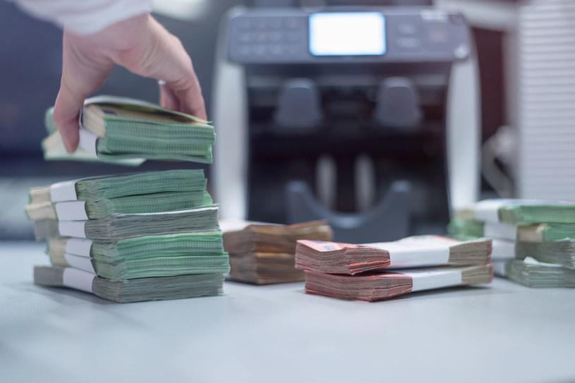 Rośnie poduszka bankowych oszczędności /123RF/PICSEL