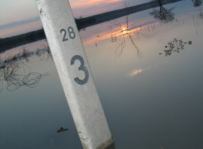 Rośnie poziom wód w rzekach /RMF24