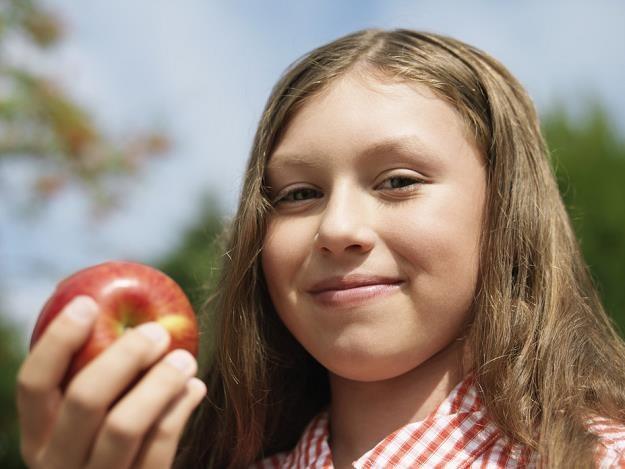 Rosyjskie embargo nie zaszkodziło polskiemu eksportowi jabłek /poboczem.pl