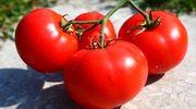 """Rosyjskie """"pomidorowe embargo"""" na Turcję szkodzi bardziej Moskwie"""