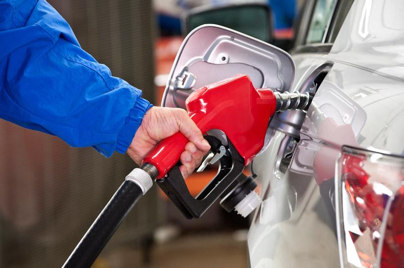 Rosyjskie władze myślą o zakazie eksportu benzyny /123RF/PICSEL