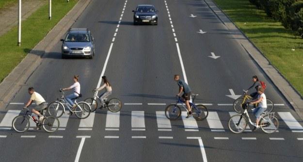 Rowerzyści notorycznie jeżdżą po pasach / Fot: Włodzimierz Wasyluk /Reporter