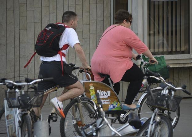 Rowerzyście twierdzą, że boją się samochodów / Fot: Włodzimierz Wasyluk /Reporter
