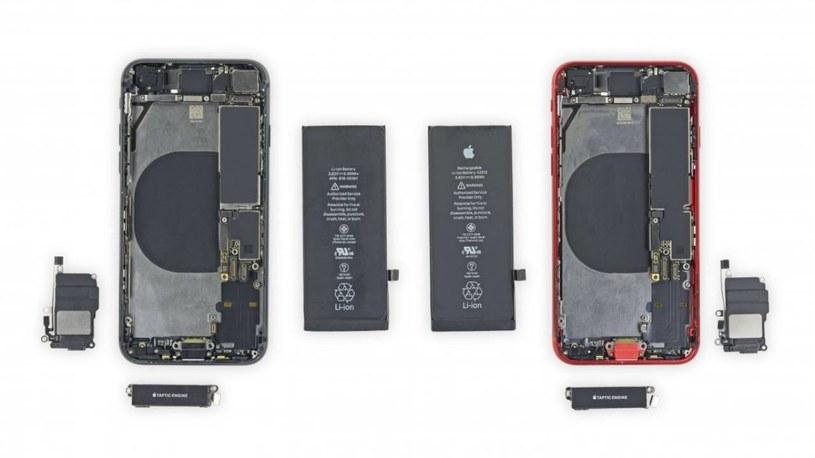 Rozbiórka iPhone'a SE (2020) / fot. iFixit /materiał zewnętrzny