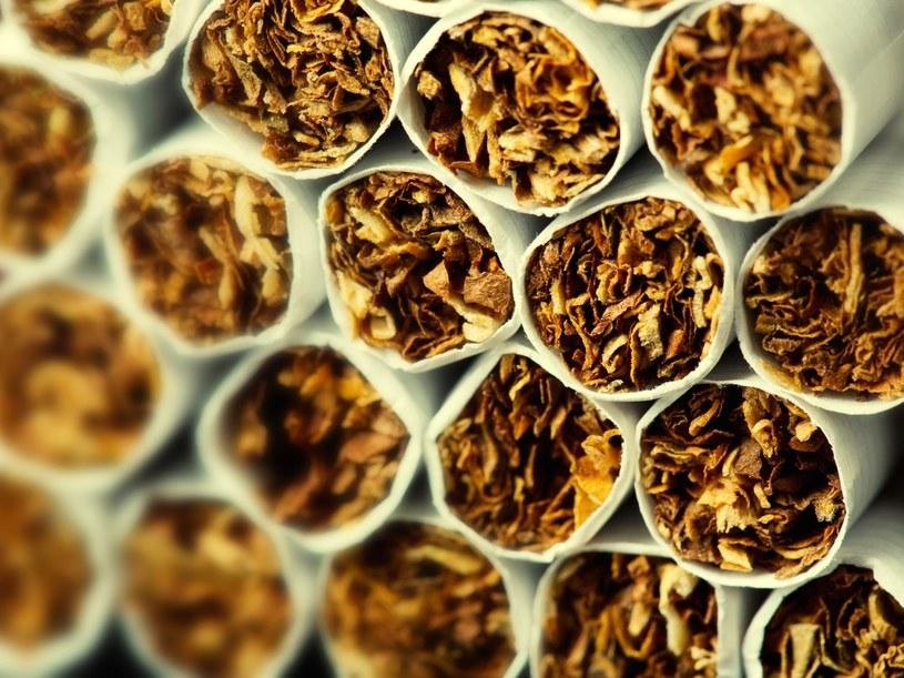 Rozbito polsko-ukraiński gang nielegalnie produkujący papierosy /123RF/PICSEL