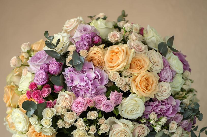 Róże /123RF/PICSEL